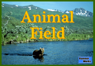 AnimalField_Box.png